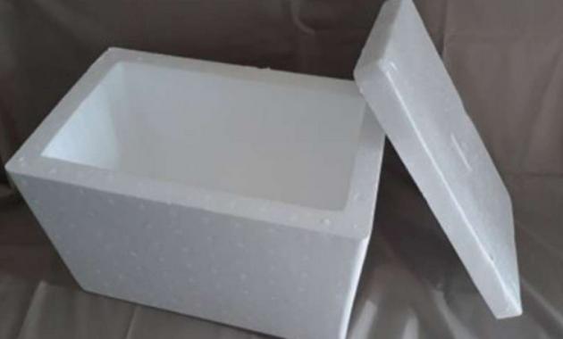 Persiapkan Bak air/ styrofoam kotak Yang Berukuran Sedang