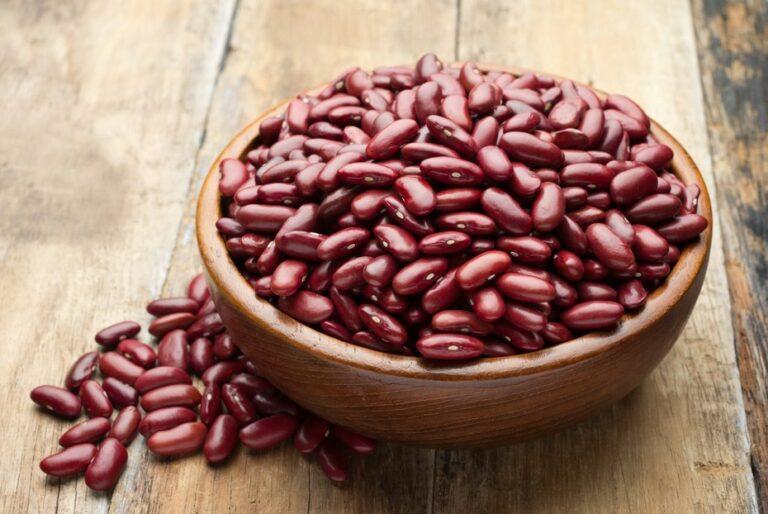 Cara Menanam Kacang Merah