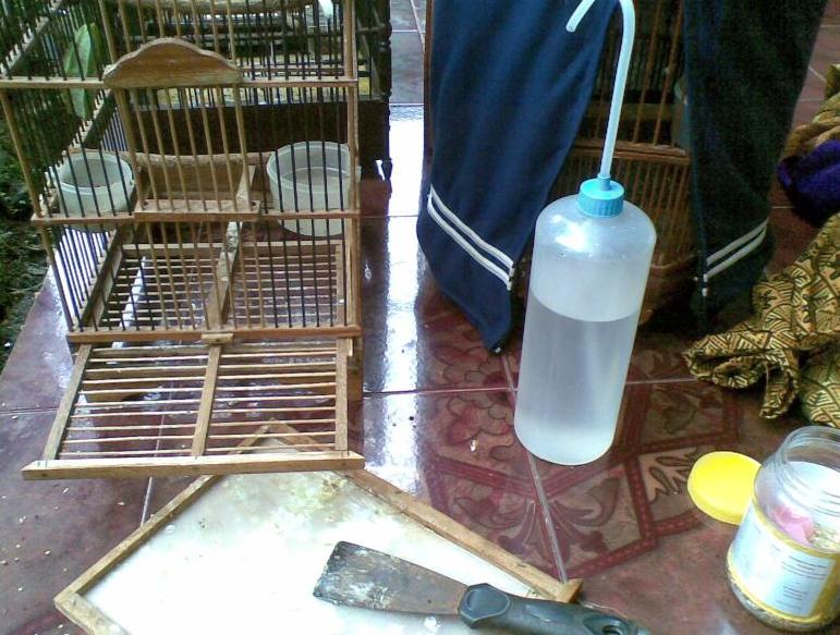 Mengganti Air Minum Secara Rutin