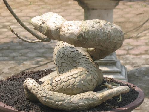 Kepala kobra