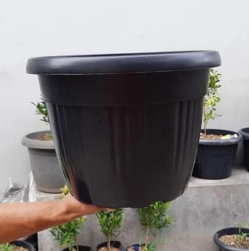 Wadah atau Pot yang Benar
